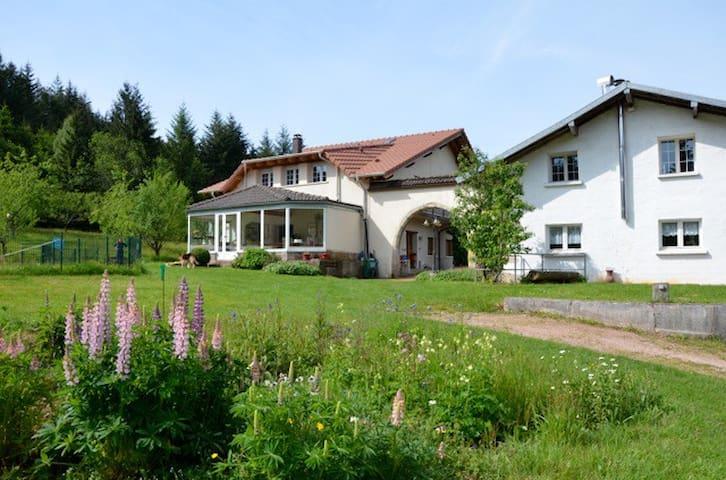 Ancienne ferme Mûre, en pleine nature - Remiremont - House