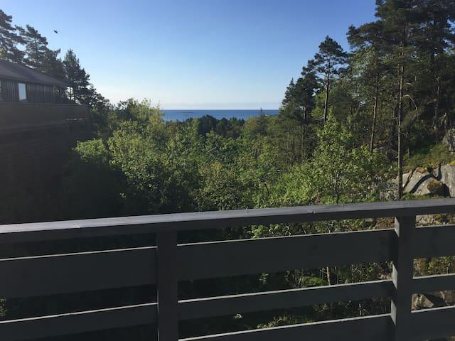 Hytte i Dybingen, Høvåg