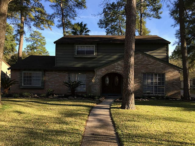 Super Bowl Ready Home! Spacious Clean Texas Home! - Houston - Talo