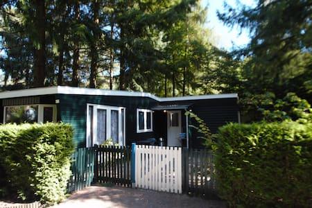 Mooie ontspannen plek inHattemerbroek op de Veluwe - Blockhütte