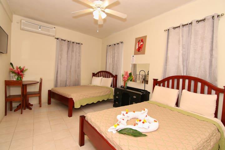 Close to downtown San Ignacio, private bath & room