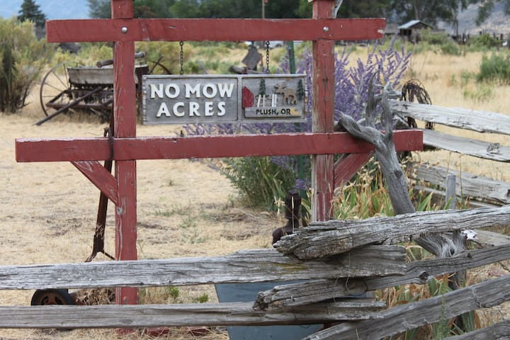 No Mow Acres