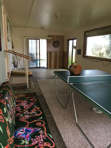 Ping pong table, dart board, covered game room, outdoor games.