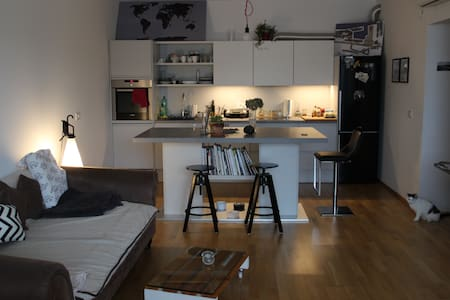 Contemporary flat with two adorable cats - Koper