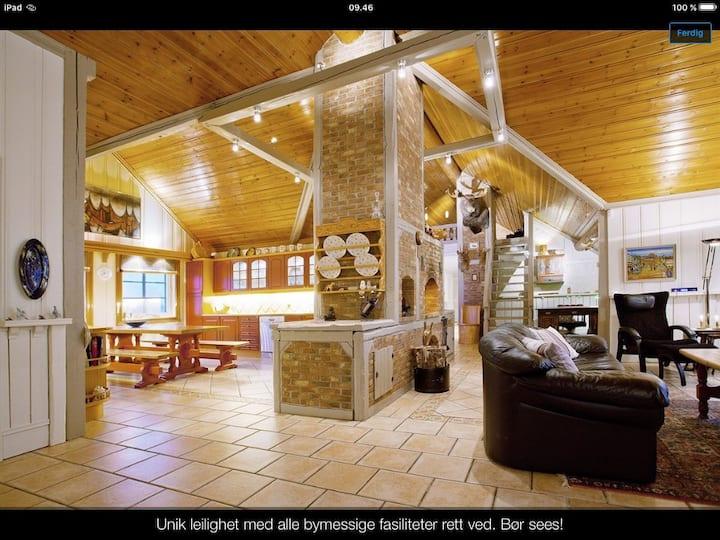 Unik, grandios Penthouse nær Oslo!