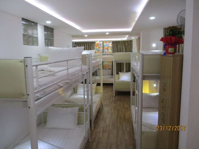 Mix sharing room with 12 beds, comfortable, clean