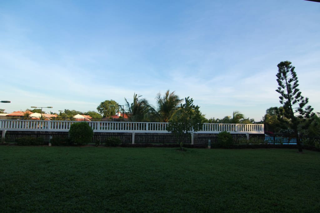 Our backyard view, taken in the late afternoon.