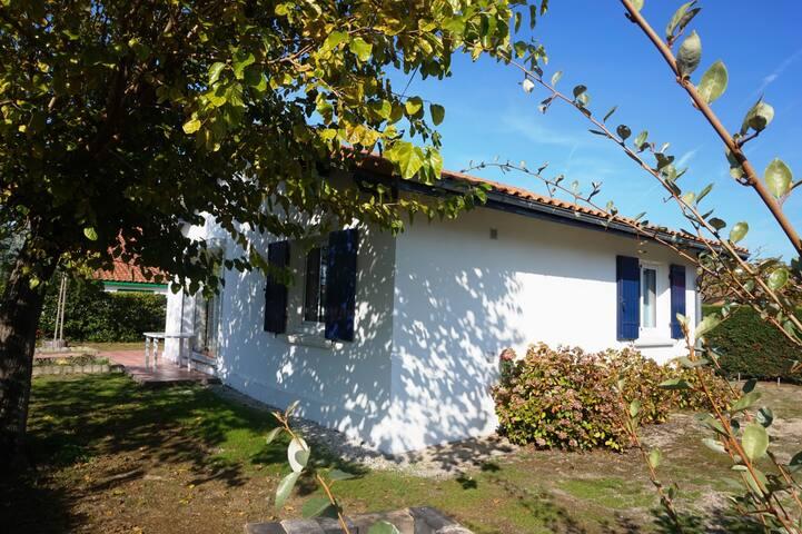Petite maison avec jardin dans secteur Sud (007) - Biscarrosse - Dům