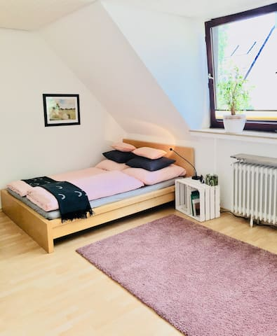 Comfy 1 Room Apartment