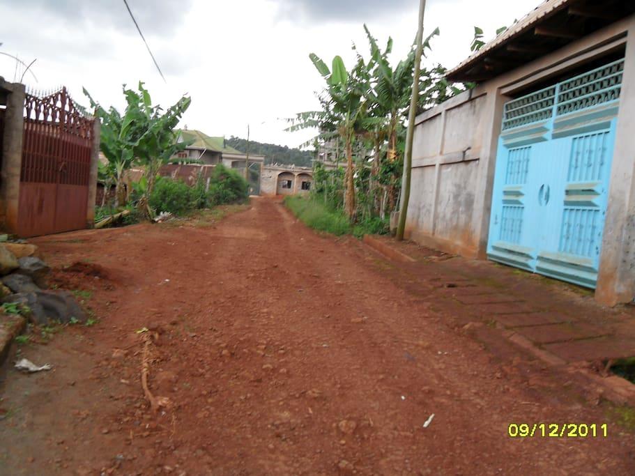 la route devant la maison
