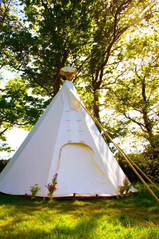 Luxury Tipi Experience.