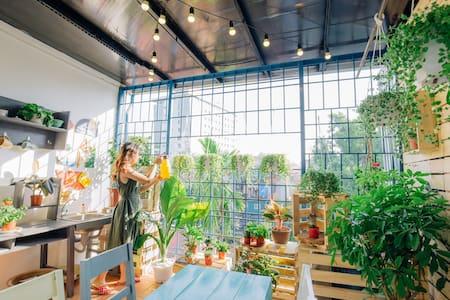 Momento - Rooftop Garden Room - Ανόι - Σπίτι