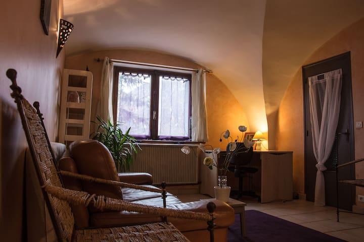 Rustique et sympathique - Puy-Saint-Pierre - House