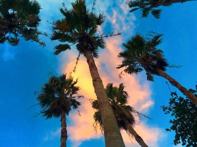 Distances:  Aventura mall                          2.1 miles Newport beach                      3.1 miles Sunny Isles Beach                 3.9 miles  Fort lauderdale Airport    12.1 miles  Miami Int Airport .                16   miles