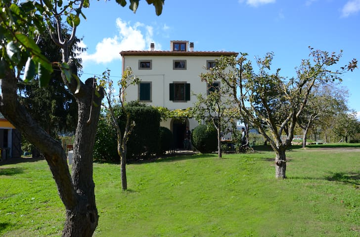 Podere Bazzino B&B - Castel del piano - Bed & Breakfast