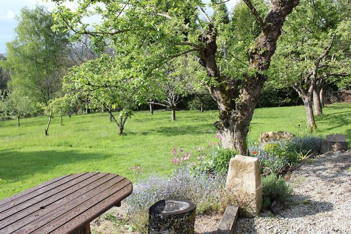 Garden - orchard