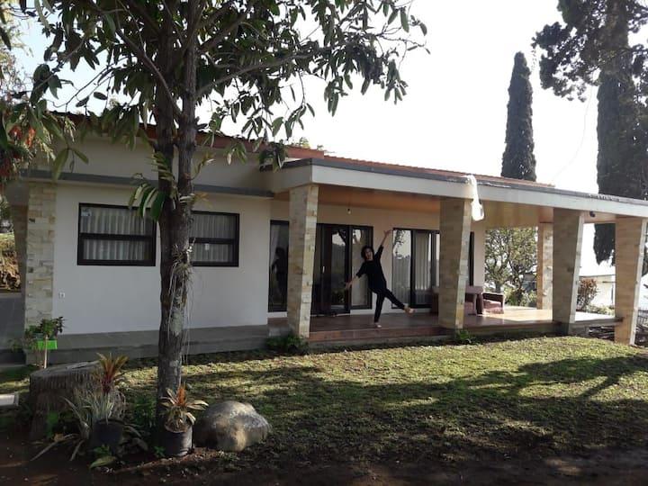 Villa Otti, batu