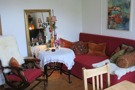 Nice spacious room close to metro and park. - Frederiksberg - Apartment