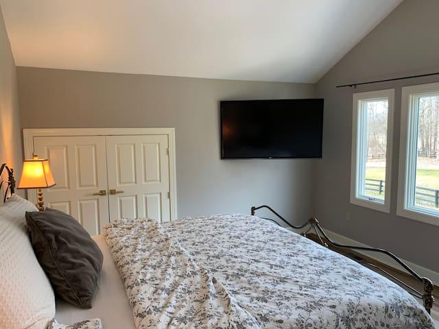 Small Closet and TV