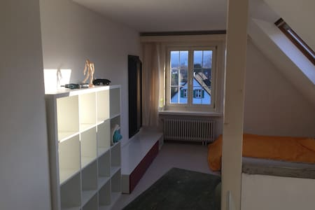 Grosses, helles Zimmer mit WLAN - Thalwil - アパート