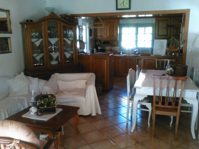 το σαλόνι η κουζίνα με το τζάκι