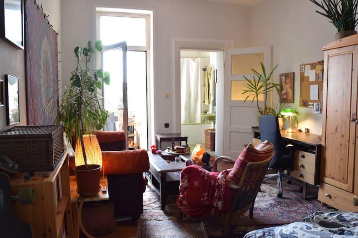Zimmer mit eigenem Balkon & Bad (gegenüber Park)