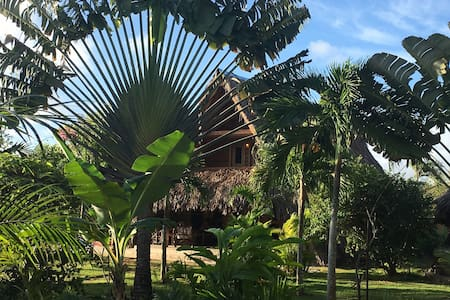 "ChaletTropical #3 : ""the Ocean"" in a Tree House! - Las Galeras - Bed & Breakfast"