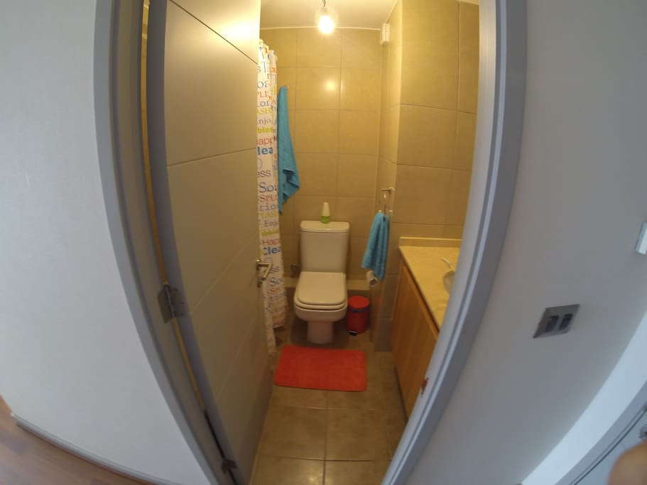 Baño pieza principal (1)