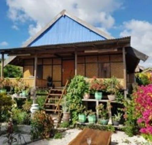 Davi homestay pulau moyo tour