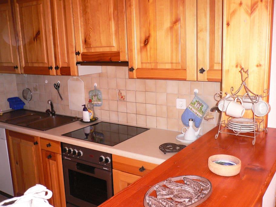 Dishwasher, fridge and big freezer, electric cooker