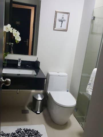 Sleek Toilet & Bath