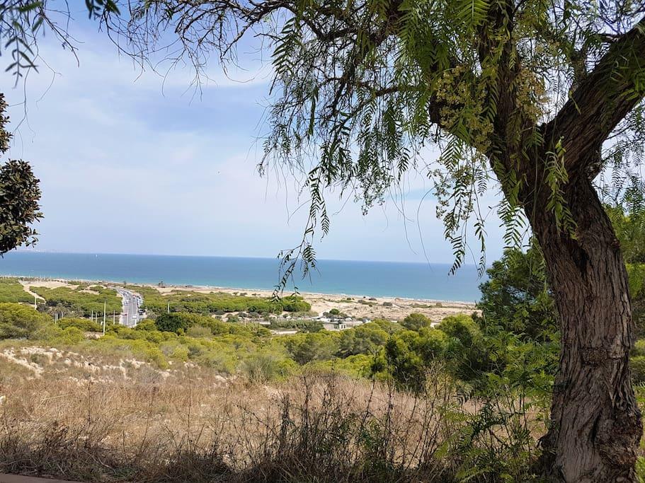 Vistas de la playa cercana Carabassi