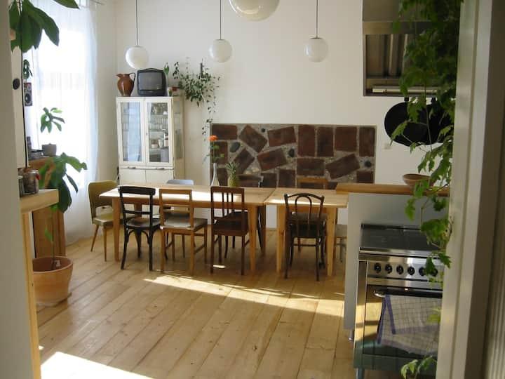Zwei Zimmer in grosser Altbauwohnung im Zentrum