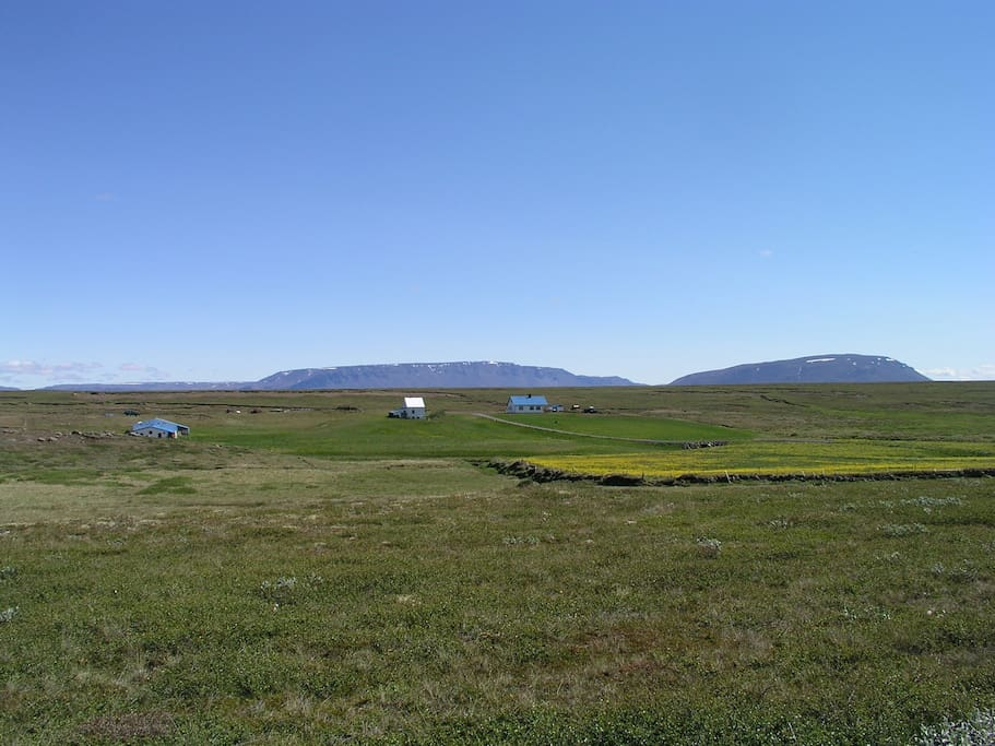 The farm is situated on a almost 4000 acres of unspoiled highland above Myvatn lake