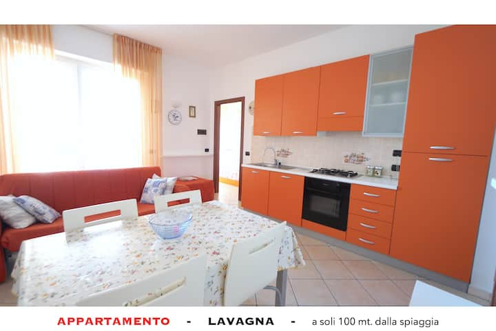 Just 100 meters from the sea and convenient to the center
