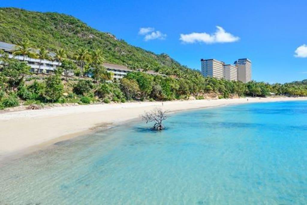 Where Is Hamilton Island Located