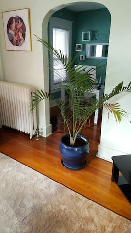 Spacious, sunny 2nd floor Room - Schenectady - Lägenhet
