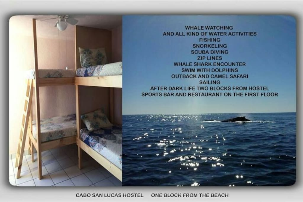 Comfortable Room 4 beds, air condicioner and wifi
