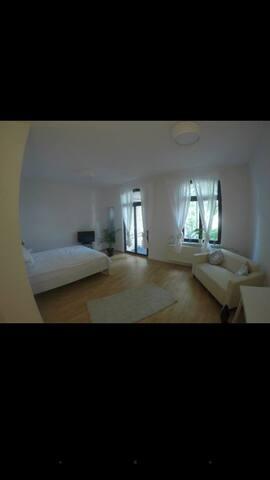 Großes Zimmer mit Balkon in der Innenstadt - Halle (Saale) - Appartement
