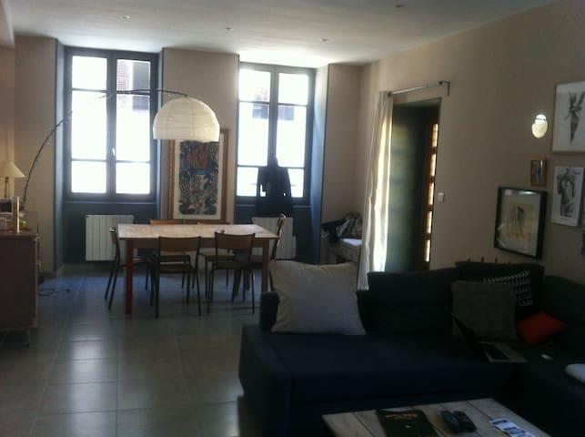 APPART VIENNE CENTRE PROCHE THEATRE - Vienne - Apartamento