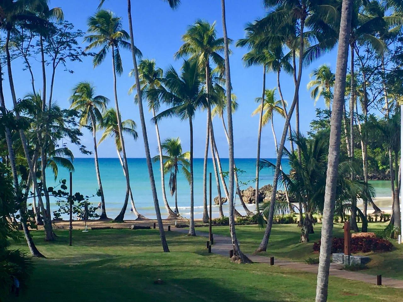 100 steps to Playa Bonita Beach. Enjoy fresh coconut juice and seaside food service from local beach restaurants