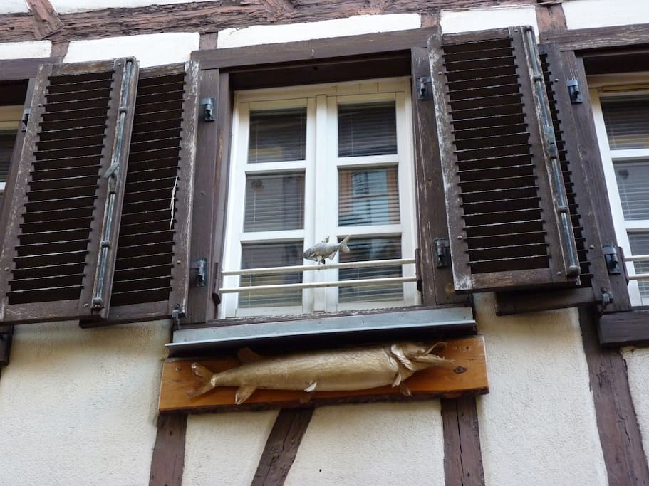 Authentic confortable and cosy alsacian House return in year 1780