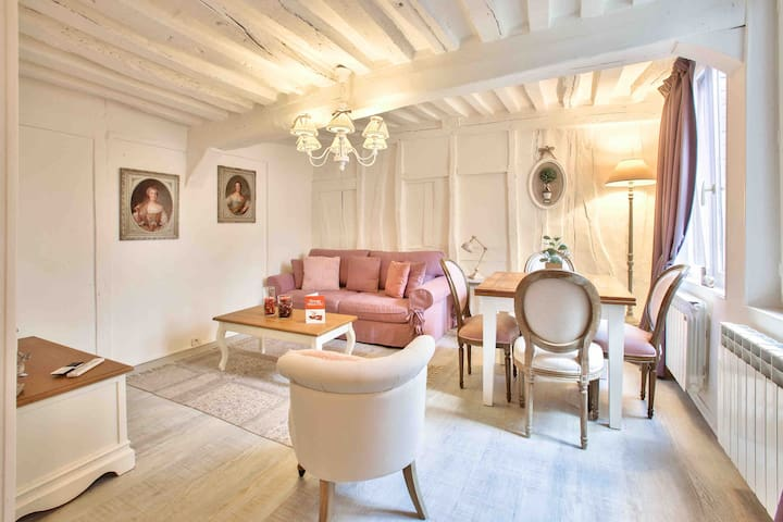 Petit Ange , charming apartment in Rouen