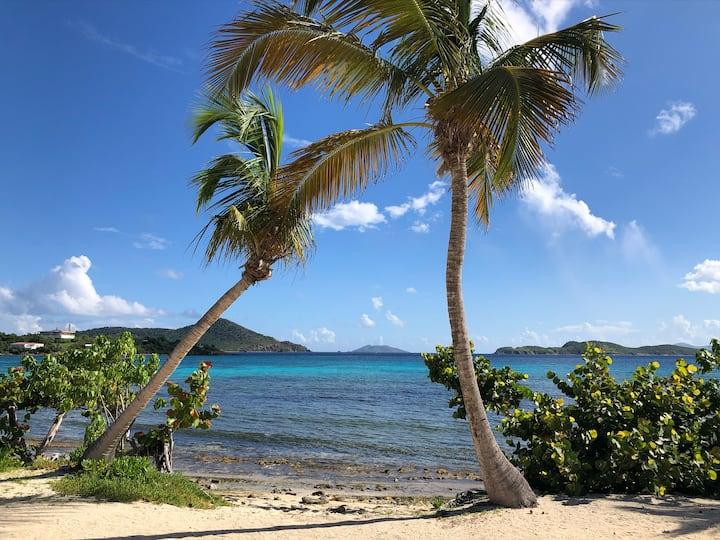 Sapphire Palms-Steps to Beach & Incredible Views!