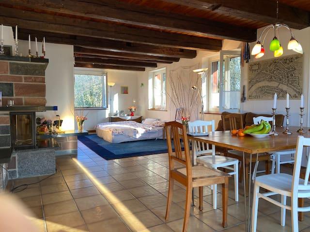 Großzügiger Wohnraum mit Eichentisch für 10 Personen. Dazu gehört großer Balkon..(Zimmer 4)