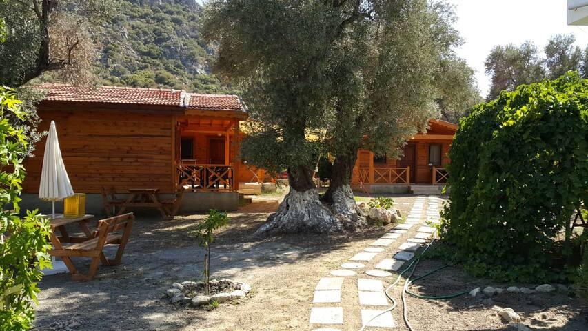 Datça Dream Garden Evleri Daire 2