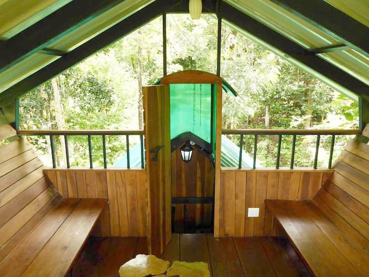 Wayanad Tree house-Wanderlust