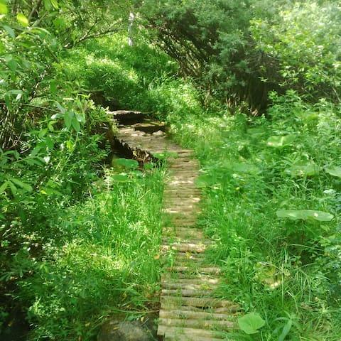 Croatia Park Plitvice - Homely studio Apt (3) - Rudanovac - Daire