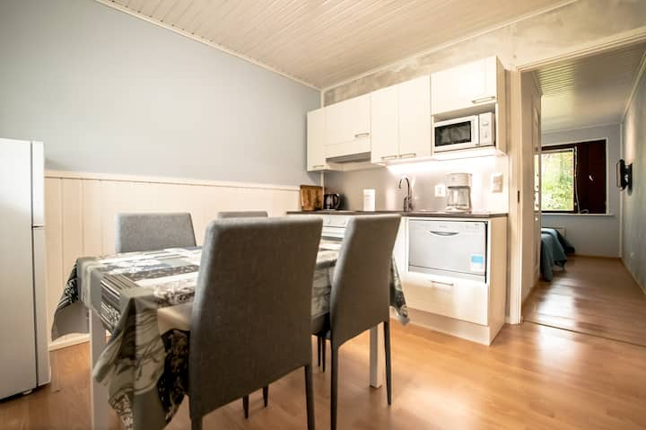 Newly renovated apartment with confy backyard
