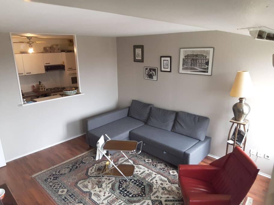 Salon avec canapé convertible